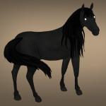 Die Kelpies Zeichnung von Jeremie Michels. Der Betrachter sieht ein schwarzes Pferd, das fast das gesamte Bild ausfüllt. Es steht so, dass man es größtenteils von der Seite sieht. Lediglich der Kopf ist zum Beobachter gedreht, sodass es einen direkt ansieht. Seine Augen haben jedoch keine Farbe, keine Iris, keine Pupille. Sie sind komplett weiß und sehen fast so aus, als würden sie leuchten. Seine Mähne und sein Schweif sehen strähnig aus, als wären sie nass oder fettig.
